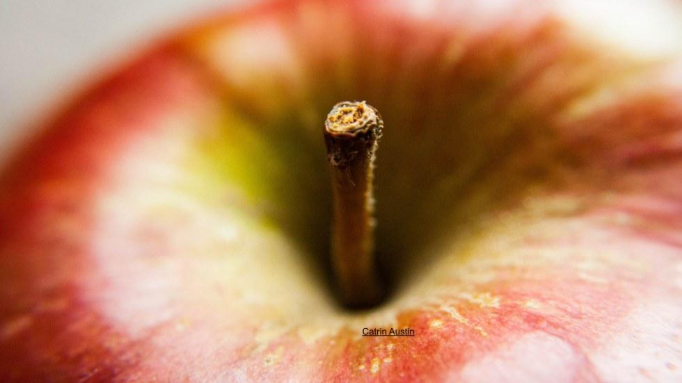 apple2.001
